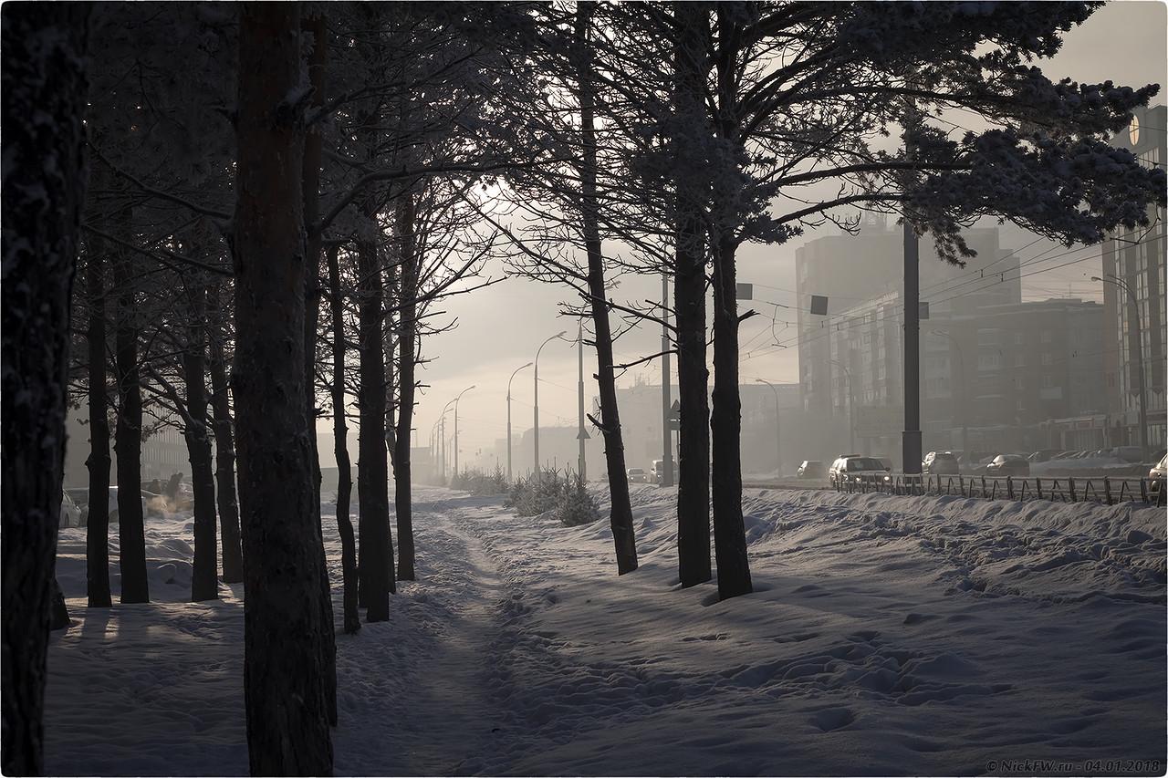 Край Сосновой аллеи на пр.Шахтёров [© NickFW - 04.01.2018]
