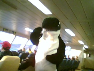 Washington Ferry Mascot