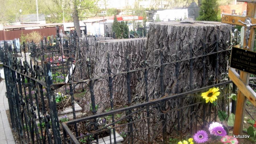 Алексеевский-могила-пни