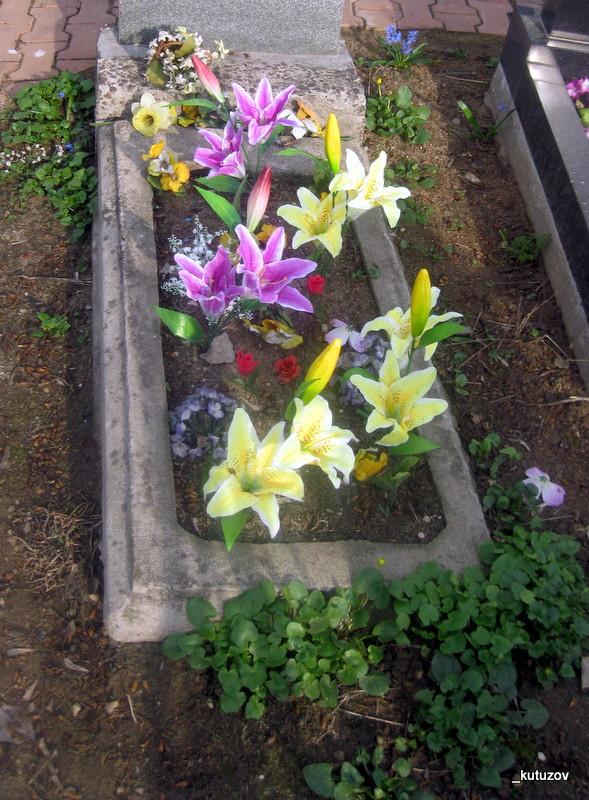 Алексеевский-могила-1