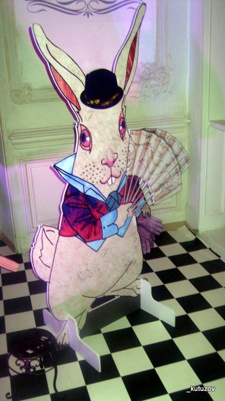 Алиса-кролик-1