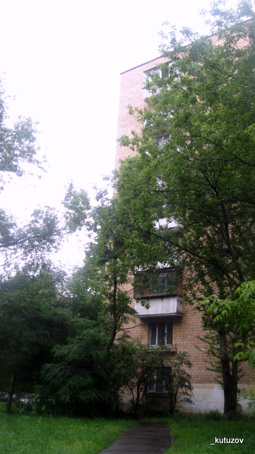 Живопис-дом-4