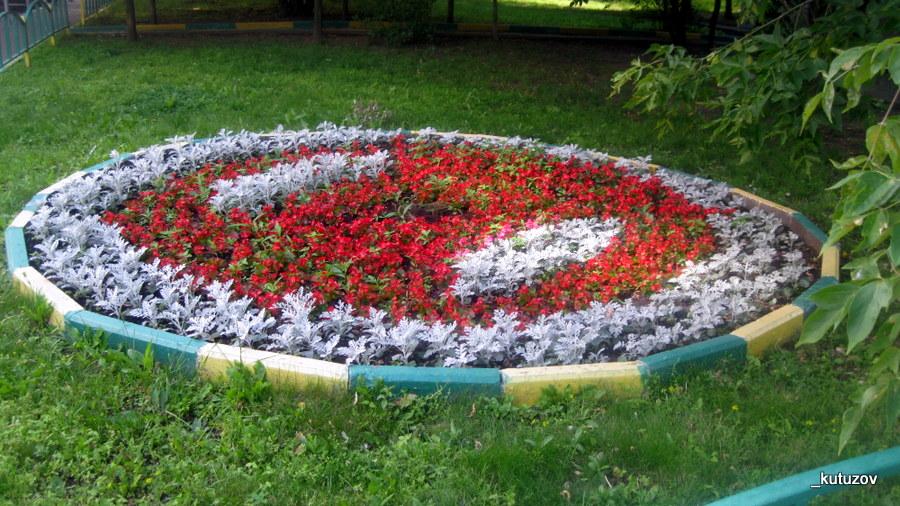 Цветы-клумба-1