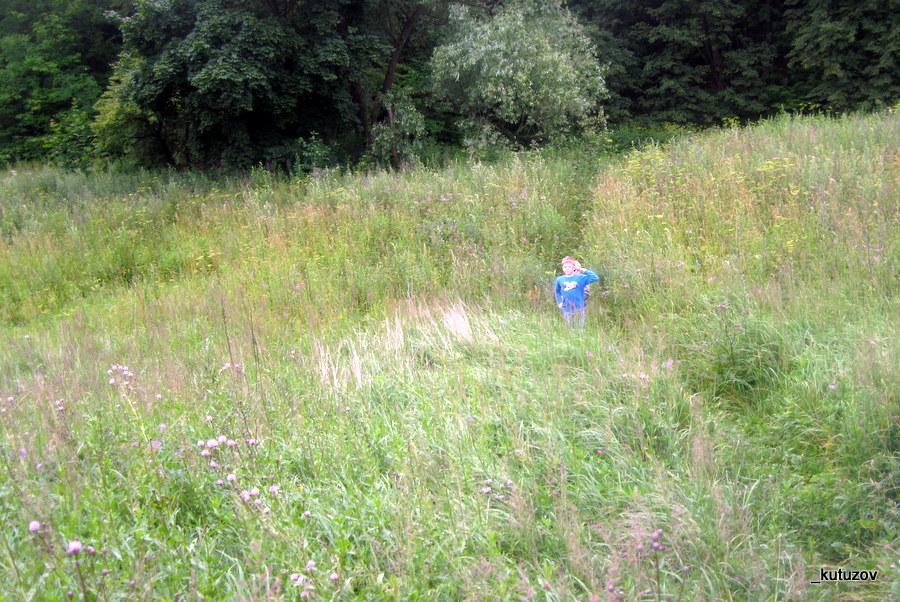Парк-битц-в траве