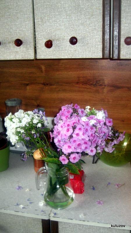 Натюрморт-цветы