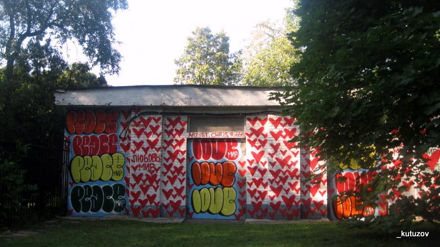 Сокол-граффити-1