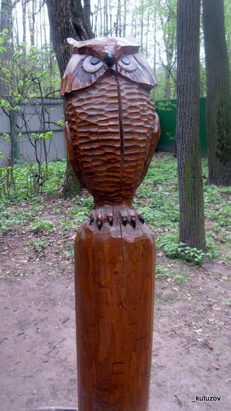 Кузьма-сова