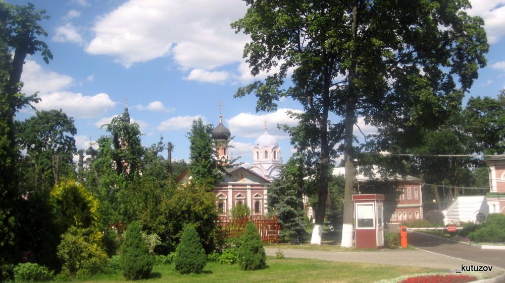 Донской-пейзаж-1