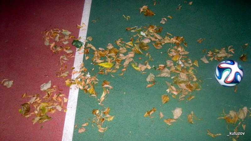 Уже падают листья