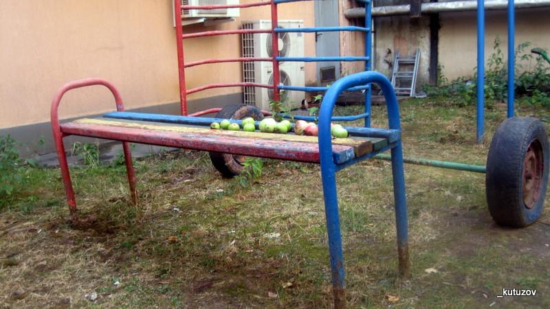 Эльдар-яблоки
