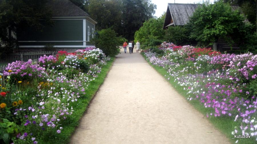 Михъай-цветы-дорожка