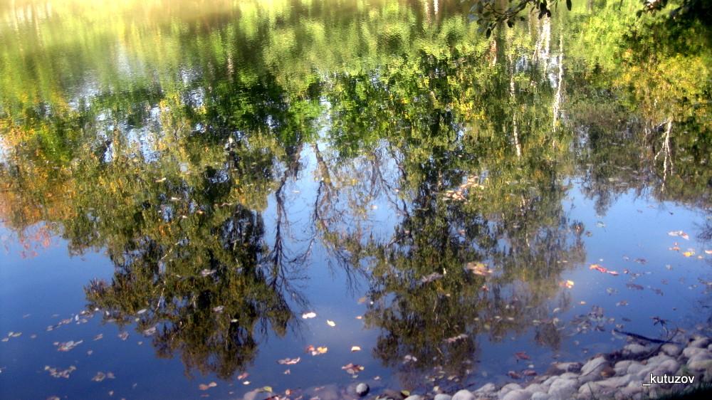 Осень-пруд