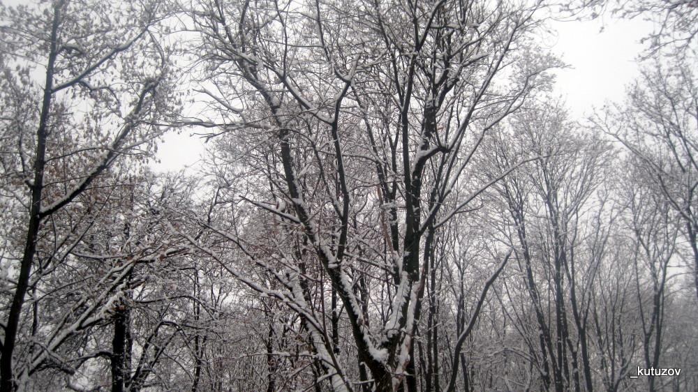 Снегопарк-1