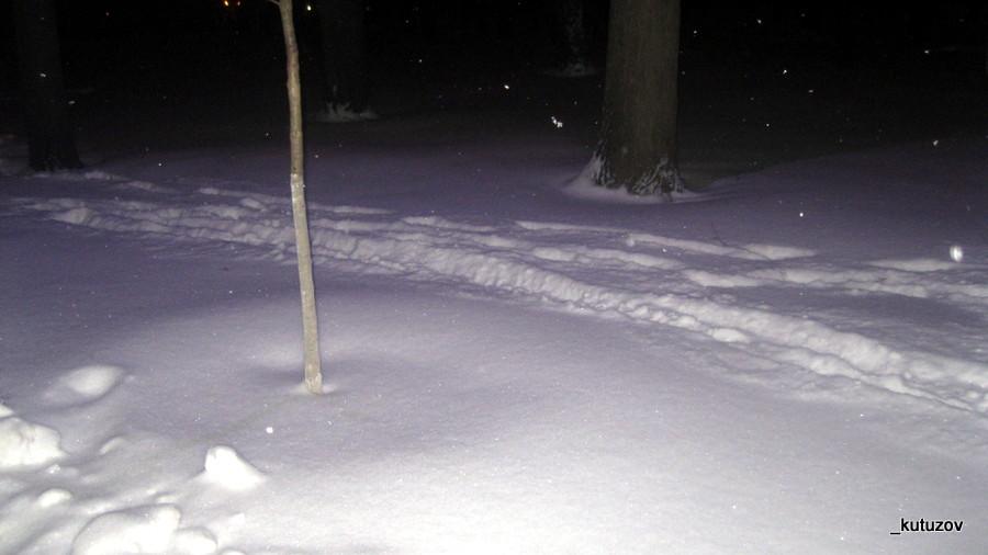 Зима-цвет-1