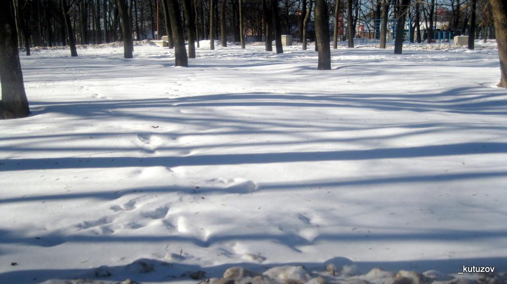 Тени-зимой