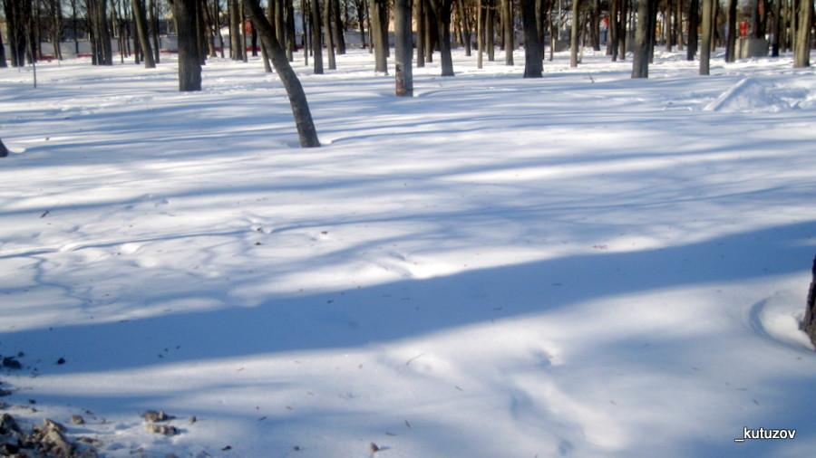 Тени-зимой-2