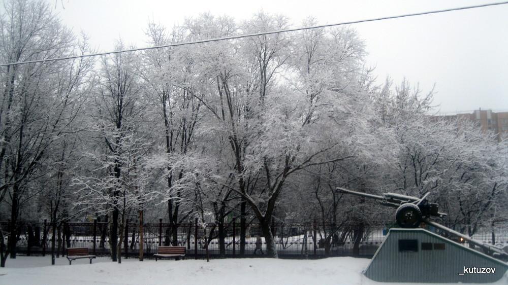 Белые деревья-4