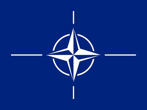 lj_nato_emblem
