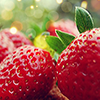 strawberries-niffy_icons