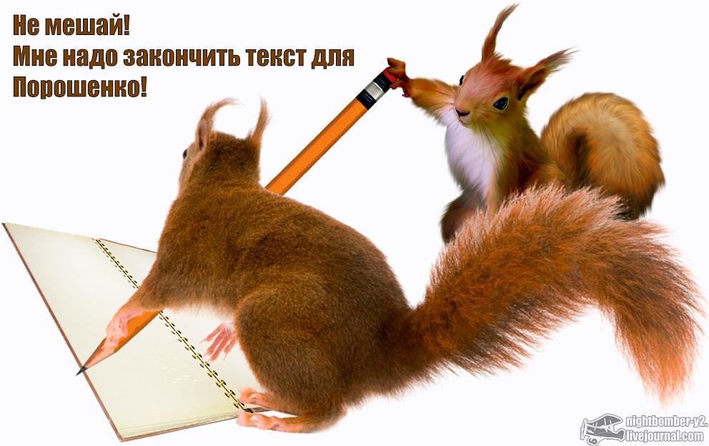 Белочка пишет для Порошенко