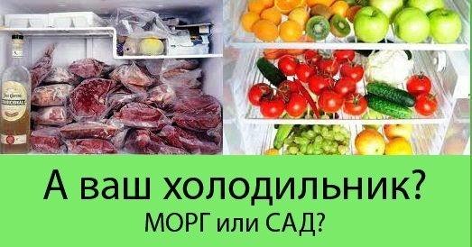 Картинки по запросу твой холодильник похож на морг или на сад