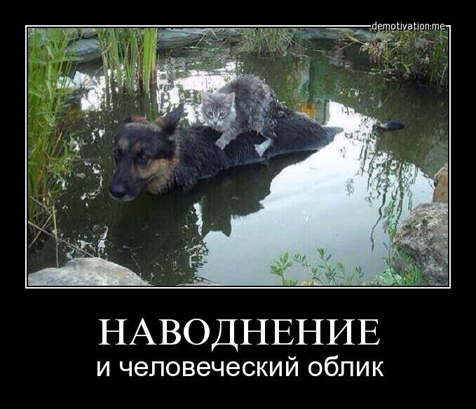 Таджикиски порнуха посматирт 25 фотография