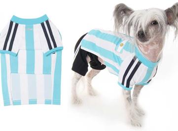Аргентина_собака