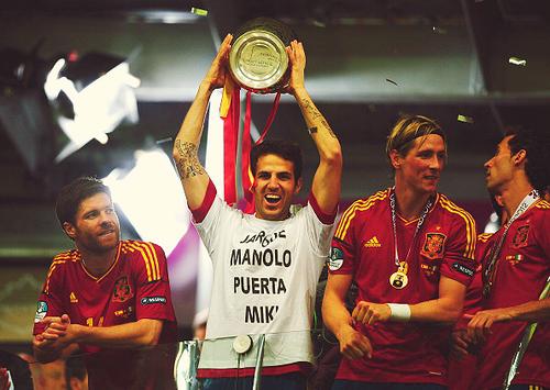 Испания Евро 2012 (8)