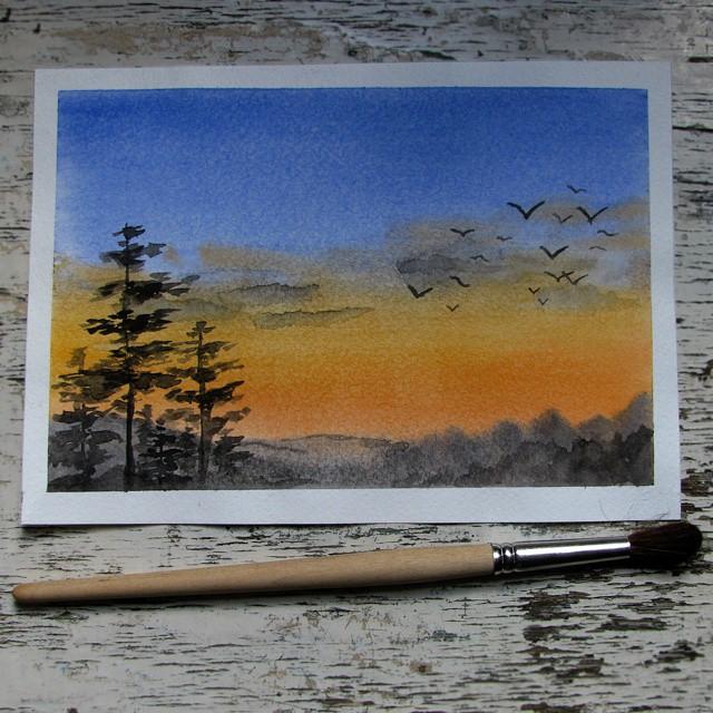 Закат в сосновом краю