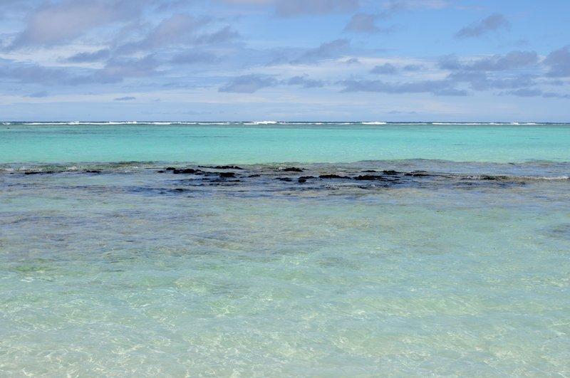 55. Вода в океане разного цвета