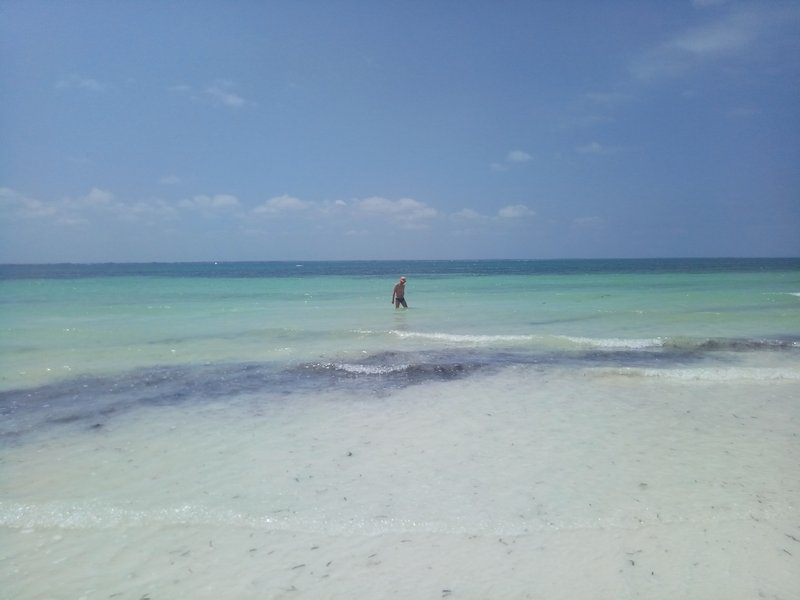 Пляж. Море мелкое.jpg