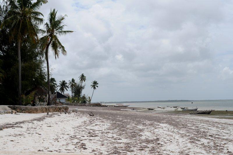 Пляж. Общественный пляж в Michamvi.jpg