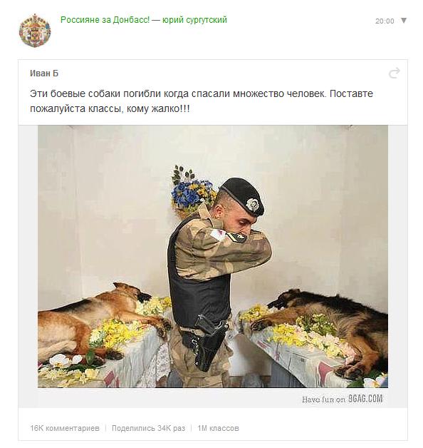 Боевые собаки за Донбасс