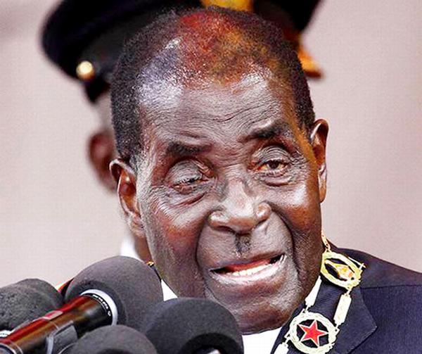 Зимбабвийский пионер