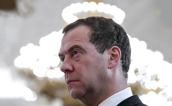Суровый Медведев