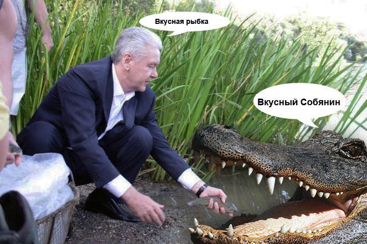 Собянин-и-Крокодил