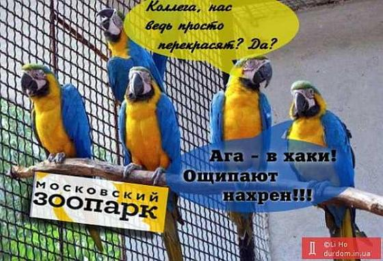 Жовто-блакитные в Москве