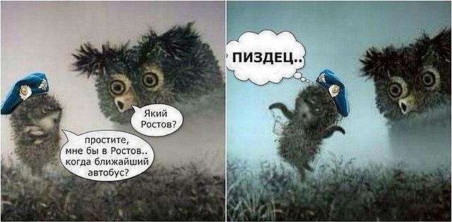С сегодняшнего дня в Украине официально стартует предвыборная кампания - Цензор.НЕТ 2629