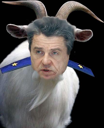 KozelMarkin