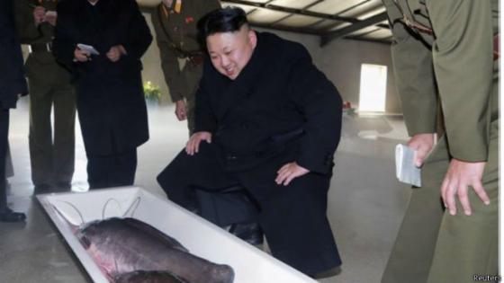 Блистательный товарищ Ким Чен Ын подчеркнул важность рыбоводства