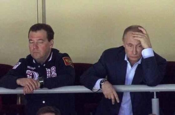 Медведев спит 3