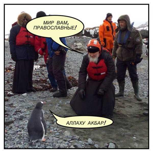 Пингвины не заменят русских снегирей!