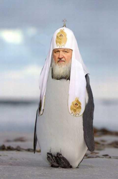 Путинский пингвин