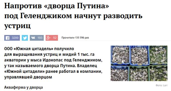Последняя капля - Напротив «дворца Путина»