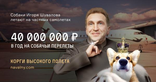 Собачья жизнь вице-премьера Шувалова