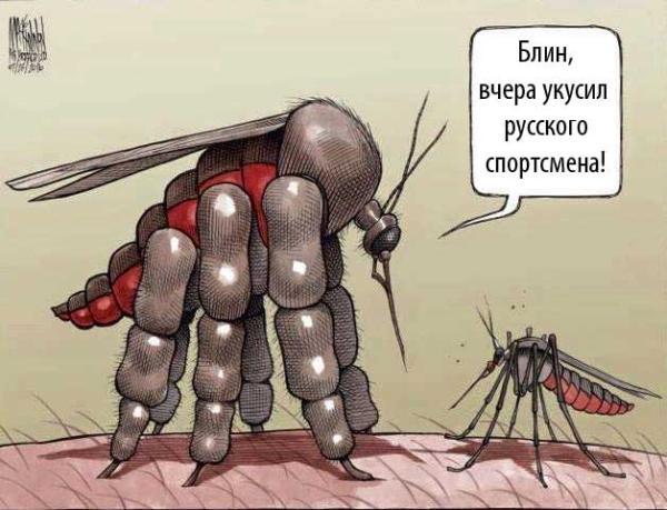Бразильские комары