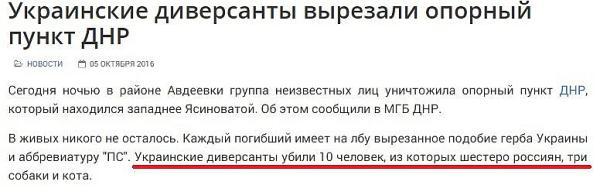 6 россиян, три собаки и кот