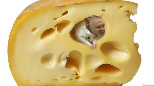 ГлаВред, с днём крысы!