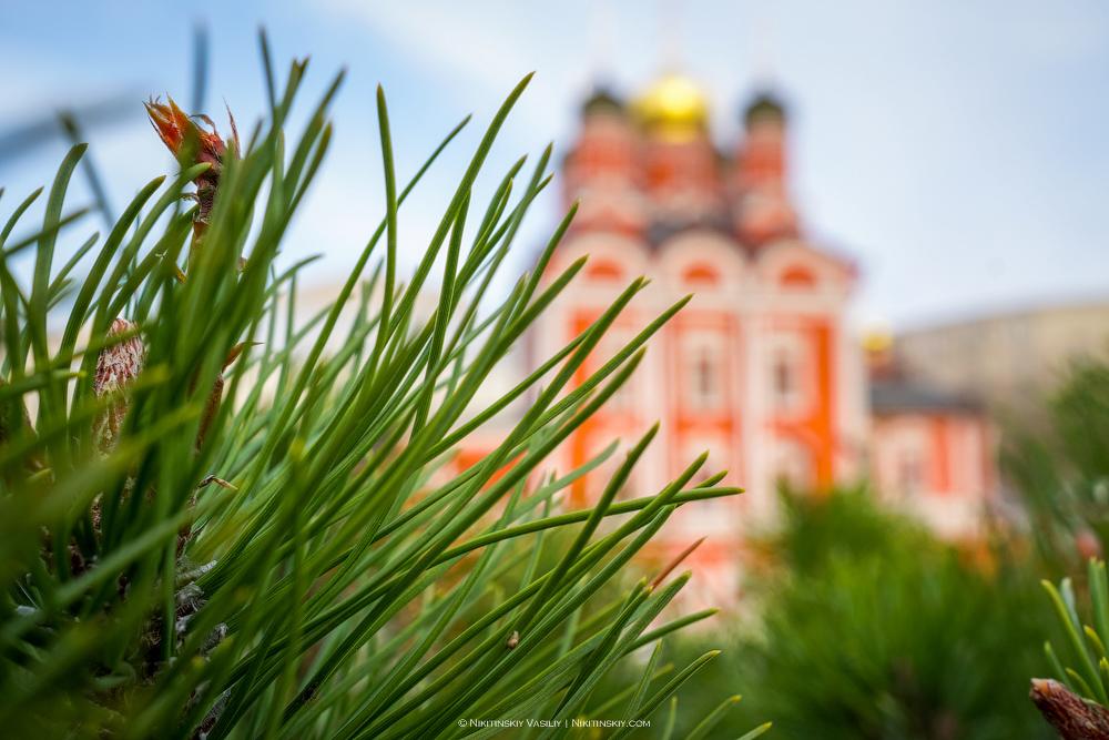 Прогулка по Москве с Sony DSC00200 copy.jpg
