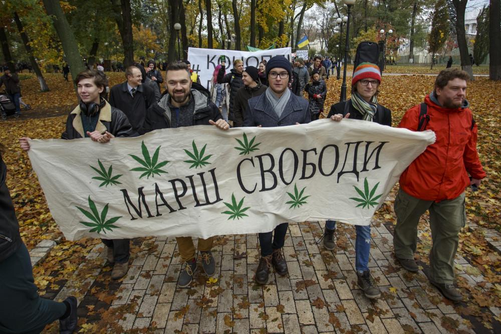 Украина марихуана и семени конопли оболочка